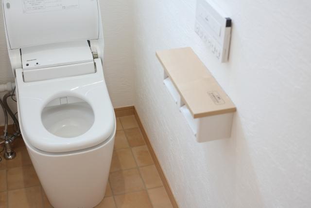 年末 トイレ 浴室 掃除 ブログ03