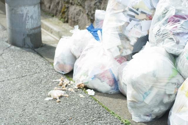 ゴミ出し 感染症対策 ブログ02